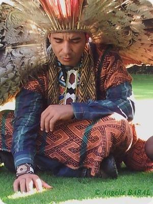 environnement,développement durable,forêt,peuples autochtones,indigènes,amazonie,brésil