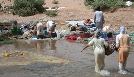 environnement maroc.jpg