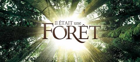 environnement,nature,biodiversité,forêt,film,éducation environnementale