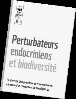 environnement, perturbateur endocrinien, produits chimiques, santé