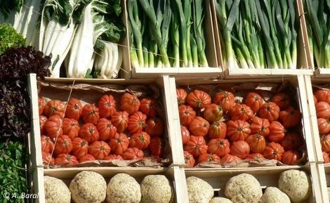 bio,produits naturels,alimentation,ocha,exposition universelle
